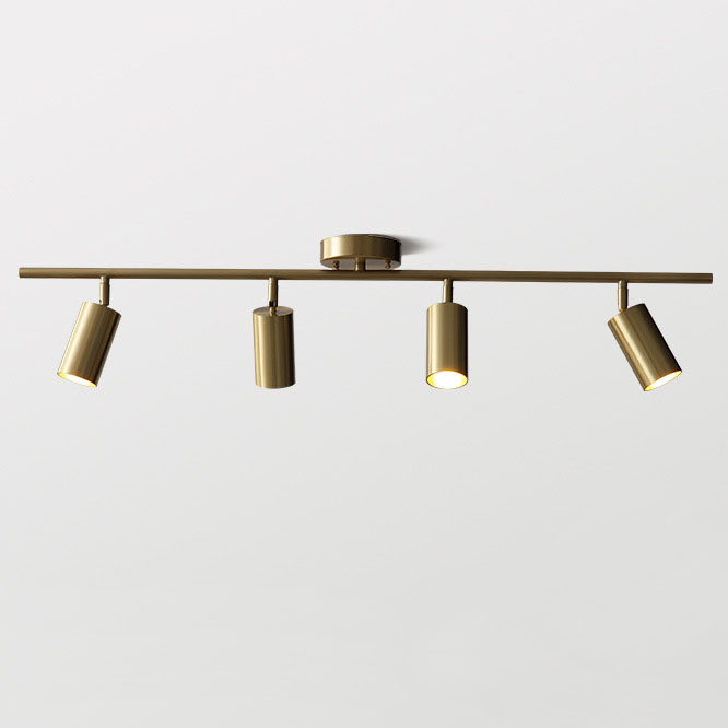 Brass 4-Light Adjustable Ceiling Light
