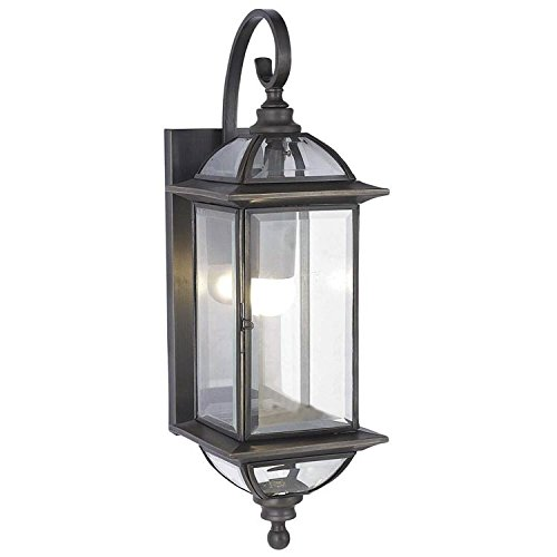 Industrial Retro Vintage Black 1-Light Outdoor Wall Lamp with Clear Glass Shade