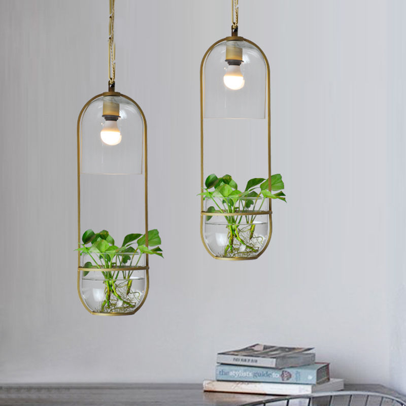 Hydroponic Plant Glass Pendant Light Ceiling Lamp Metal Home Modern